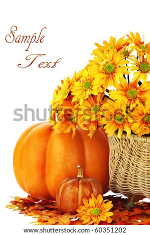 Autumn or Thanksgiving Bouquet with pumpkins and leaves against a white background. Shallow DOF. Clipping path included. - stock photo