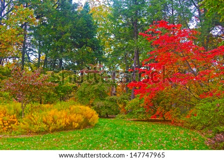 Autumn palette. US National Arboretum in the Fall, Washington DC. - stock photo