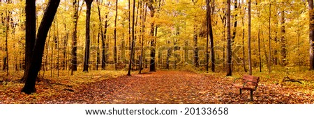 Autumn Panorama - stock photo