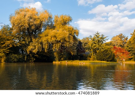 Autumn park and pond. Colorful forest