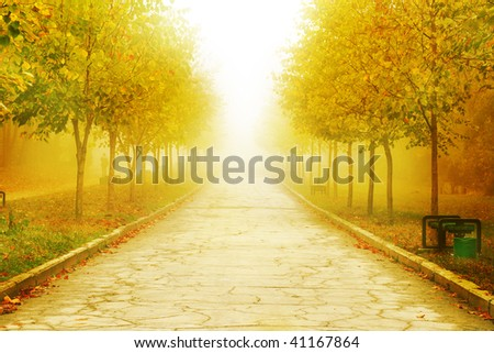 autumn park background - stock photo