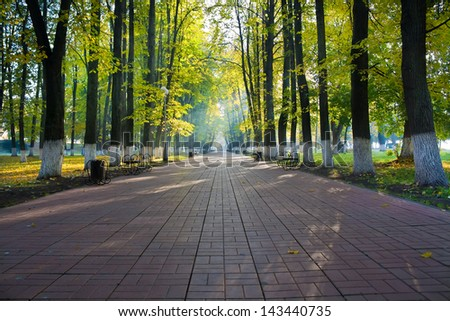 Autumn park in sun rays - stock photo