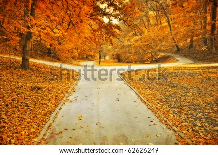 Autumn park lanes dim grunge photo - stock photo