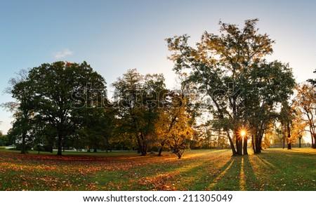 Autumn park - panorama with sun at sunset - stock photo