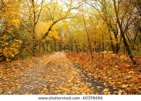 Autumn park road - stock photo