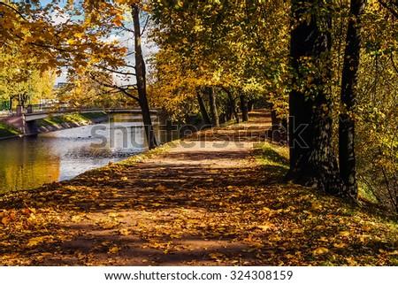 Autumn park road near the river - stock photo