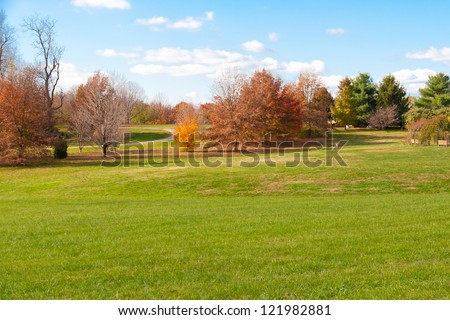 Autumn park with green meadow.