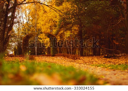 Autumn park with pergolas leaves   - stock photo