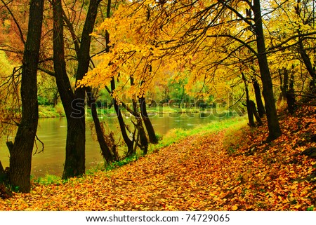 Autumn park with river is running down in autumnal forest - stock photo