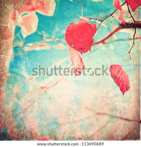 Autumn, pink leafs on vintage textured blue sky - stock photo