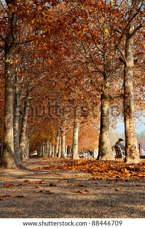 Autumn promenade at Lake Balaton, Hungary (Balatonfured)