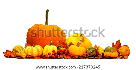 Autumn pumpkin and vegetable border isolated on white - stock photo