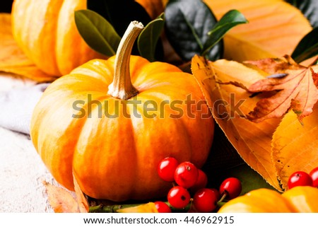 Autumn pumpkin and yellow leaves. Selective focus. - stock photo