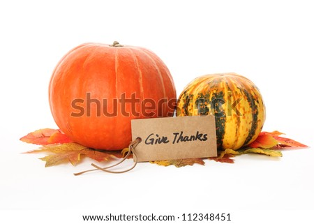 Autumn Pumpkins and paper card on white background