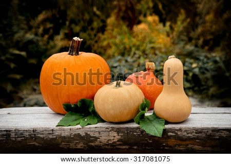Autumn pumpkins on on wood table in garden.  Toned image - stock photo