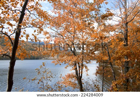 Autumn red foliage on the lake, Vermont - stock photo