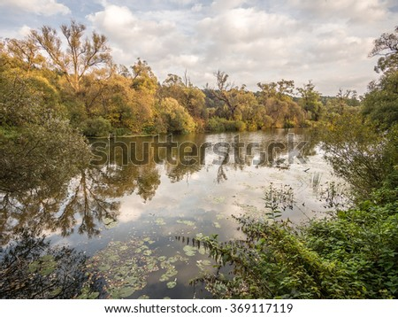 Autumn. River Nara. Moscow region.