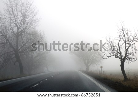 Autumn road and fog and the silhouette of trees - stock photo