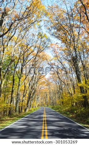 Autumn Road at Shenandoah National Park - stock photo