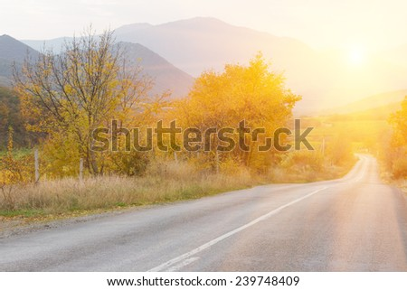 Autumn road at sunset - stock photo