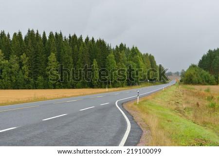 Autumn road in haze of rain - stock photo