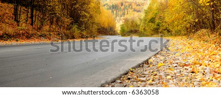 autumn road in the forest - stock photo