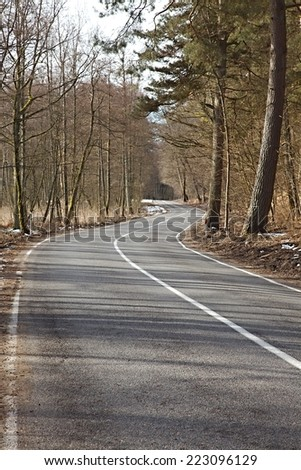Autumn road leading through the trees - stock photo