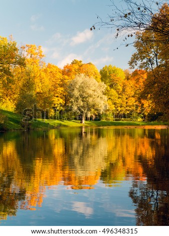 Autumn scene in Alexander's park of Tsarskoe Selo. Colorful red and yellow trees against blue sky mirroring at water.