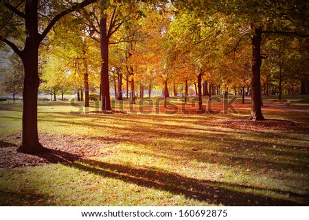 Autumn scene in the park - stock photo
