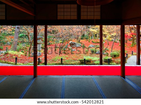 Autumn scenery of a beautiful Japanese Garden in Kyoto Japan, with view through the sliding doors (shoji) of Enkouji, a Buddhist temple famous for its colorful maple foliage and peaceful Zen ambiance