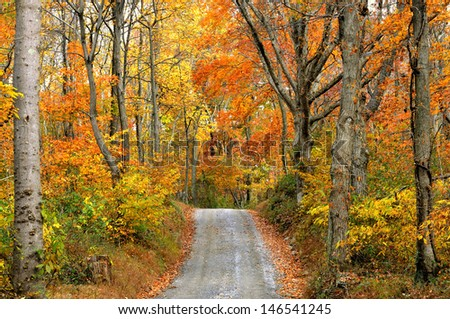 Autumn Scenic of Mountain Road - stock photo