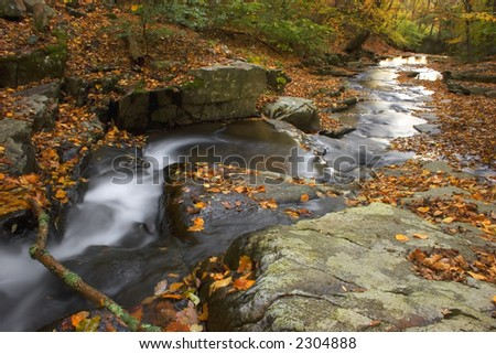 Autumn scenic photo of Herring Run -- Susquehanna State Park, Maryland - stock photo
