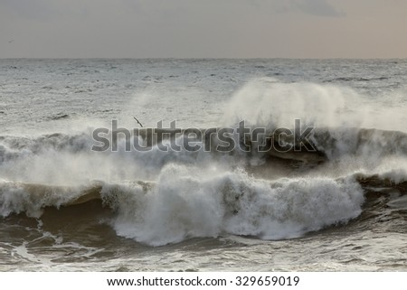 Autumn seascape with stormy waves breaking in the northwest portuguese coast