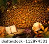 Autumn season concept design. Fall background with text in beautiful yellow forest. Vintage design with autumn fruit, mushrooms, leaves and book diary. - stock photo