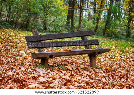 Autumn season , empty park bench with fall leaves.