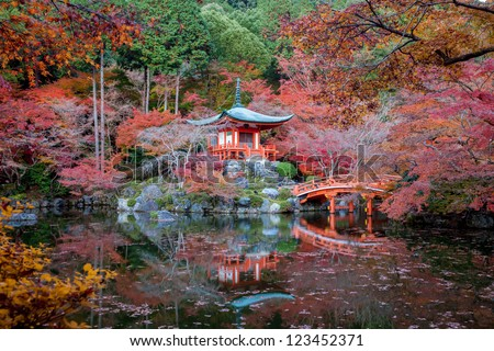 Autumn season,The leave change color of red in Temple japan. - stock photo