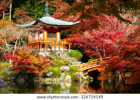 Autumn season,The leave change color of red in Temple japan - stock photo