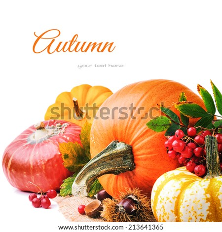 Autumn setting with various pumpkins and rowan berry - stock photo
