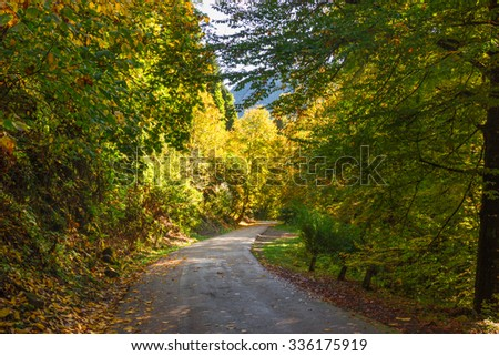 Autumn sketches and natural scenery. Abkhazia October
