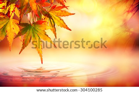Autumn spa background with red leaves on water  - stock photo