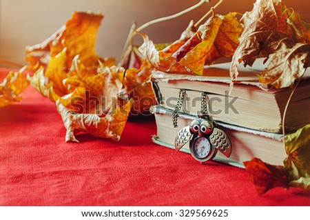 Autumn still life in vintage tones -  old books with old bronze clock in form of owl  among the dry yellow maple leaves under  bright sunlight.  Selective focus at the clock - shallow depth of field - stock photo