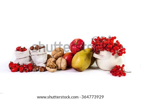 Autumn still life of fruit apples pears nuts viburnum isolated on a white background - stock photo