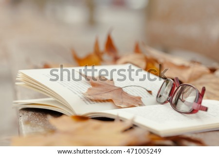 Autumn still life on   bench with maple leaves and open book.