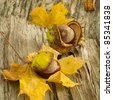 Autumn still-life with chestnuts on wood background - stock photo