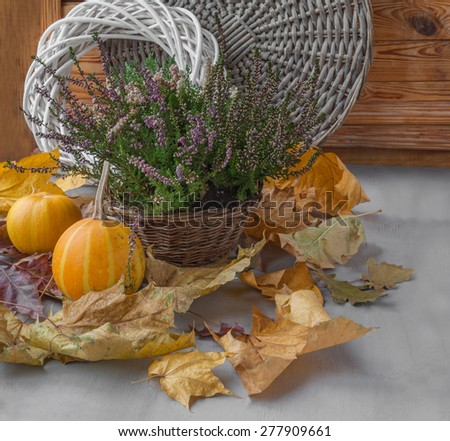 Autumn still life with Heather in a basket and dry leaves and pumpkins - stock photo