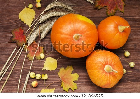 Autumn still-life with pumpkins and little yellow apples  - stock photo