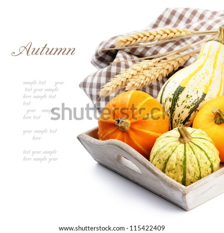 Autumn still-life with pumpkins isolated over white - stock photo