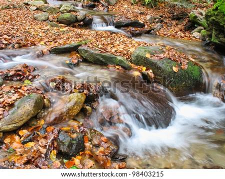 autumn stream - stock photo