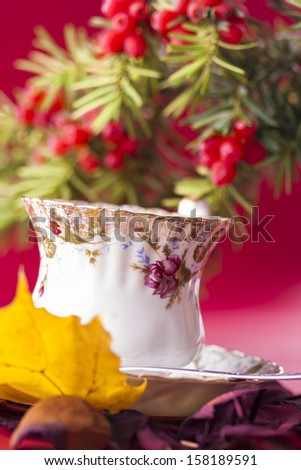 Autumn style close up photo of a hot coffee porcelain cup with the common juniper placed in the back over a red background.