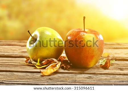 autumn sun light and apples and leaves  - stock photo